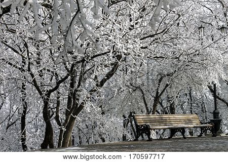 Winter scene with park bench of Northern Caucasus.