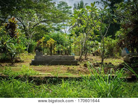 Graveyard made from stones surrounding by green garden with trees and bushes photo taken in Bogor Indonesia java