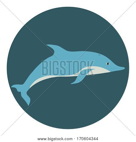 Dolphin, dolphin icon. Flat design, vector illustration, vector.