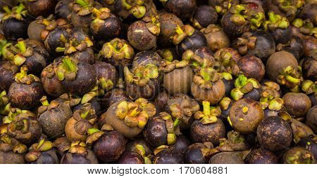 Ripe mangosteens with beautiful purple colour sold in traditonal market in Bogor Indonesia java