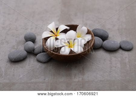 frangipani in wooden bowl with spa stones on grey background.