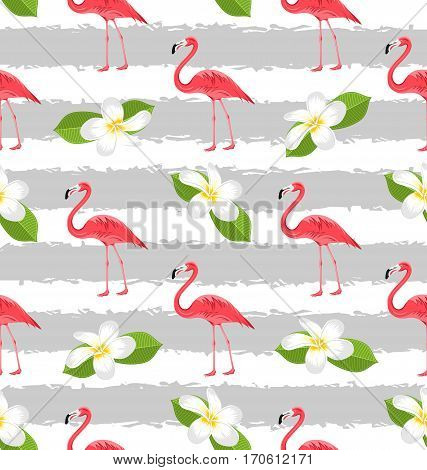 Illustration Seamless Pattern with Plumeria Flowers and Pink Flamingo Birds, Exotic Background - Vector