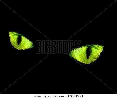 Green cat eyes in a dark