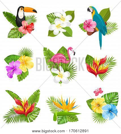 Illustration Set Composition with Tropical Flowers, Exotic Bird and Plants. Collection Elements Isolated on White Background - Vector