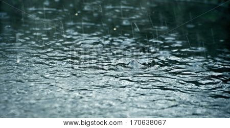 the heavy shower; close up shallow dof