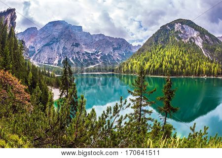 Green water reflects the surrounding forest and mountains. Magnificent lake Lago di Braies. South Tyrol, Italy. The concept of walking and eco-tourism