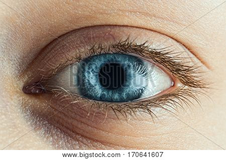 Female Blue Eye With Long Lashes Close Up. Human Eye Macro Detail.