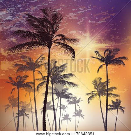 Exotic Tropical Palm Trees At Sunset. Vector Illustration