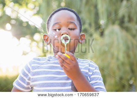 Boy making bubble with bubble wand in a park on a sunny day