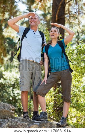 Couple looking something and smiling on the wood