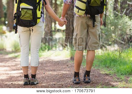 Low section of couple holding hands and standing in forest