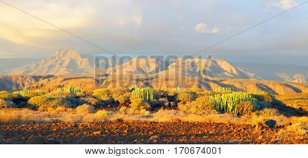 Picturesque panoramic view of desert and mountains at sundown on Tenerife, Canary Islands