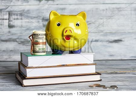 Books, dollars and piggy bank. How to acquire knowledge.