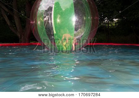Little Girl In Zorb In The Pool