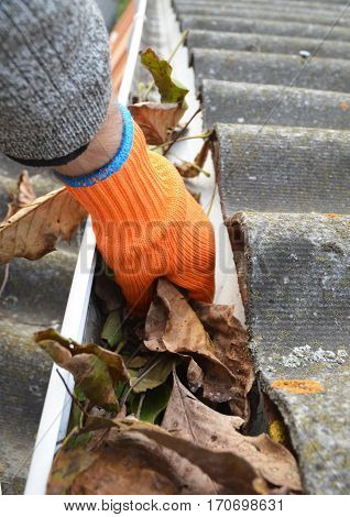 Rain Gutter Cleaning. Worker hand cleaning house rain gutter.