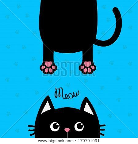 Black cat Funny face head silhouette. Meow text. Hanging fat body with paw print tail. Cute cartoon character. Kawaii animal. Baby card. Pet collection. Flat design Blue background. Isolated. Vector