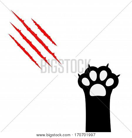 Black cat paw print leg foot. Bloody claws scratching animal red scratch scrape track. Cute cartoon character body part silhouette. Baby pet collection. Flat design. Isolated. White background. Vector