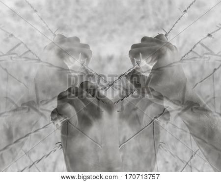 Lots of tortured hands grasping desperately barbed wire on black and white background