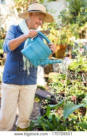Happy mature female gardener spraying water on plants at garden