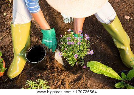 High angle view of mature female gardener using trowel for planting at garden