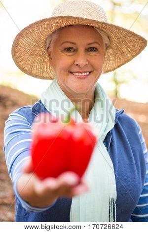 Portrait of happy mature female gardener holding red bell pepper at garden