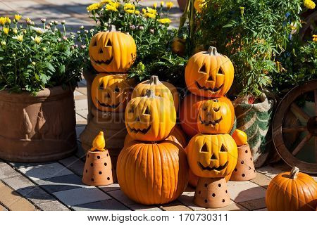 Halloween pumpkin head jack lantern. Halloween still life with pumpkins.
