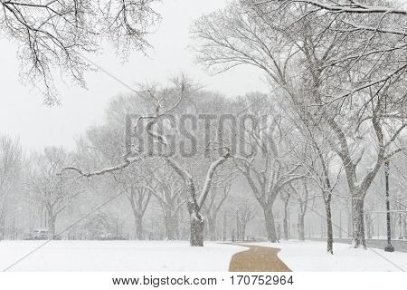 Washington DC in Winter - Rock Creek Park Trails which runs parallel to Potomac River has a wonderful scenic view under the heavy snow.