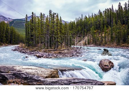 The ecological trip to Canada. The concept of extreme tourism. Small island in emerald waters of the river. The bear passes the rough river
