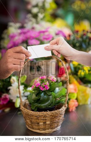 Florist giving visiting card to customer in the flower shop