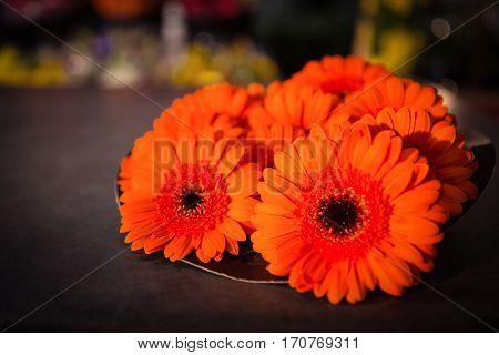 Close-up of orange flower at flower shop