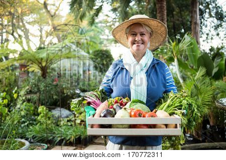 Portrait of happy confident mature female gardener carrying vegetables crate at garden