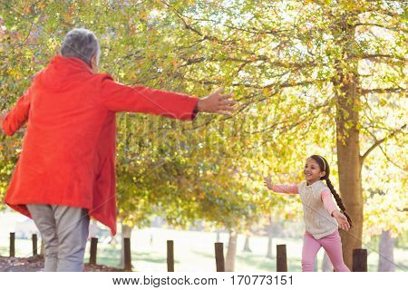 Happy granddaughter running towards grandmother at park
