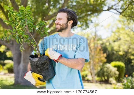 A volunteer man holding plant in park