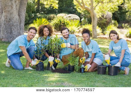Group of volunteer planting in park