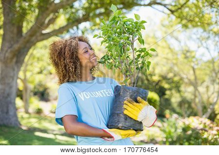 A volunteer woman holding plant in park