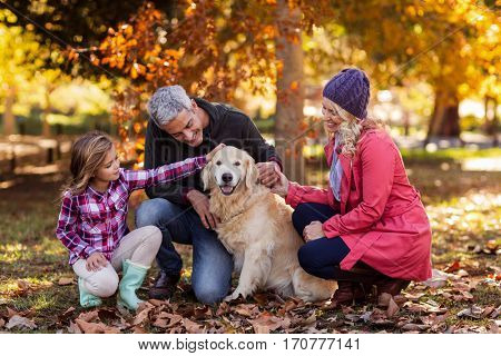 Happy family stroking dog while crouching at park during autumn