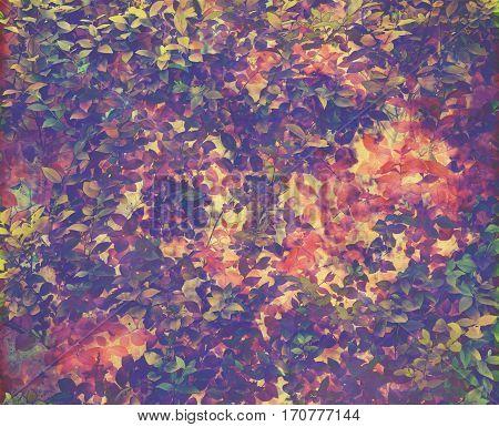 Leafy autumn foliage background. Canvas textured grunge image.