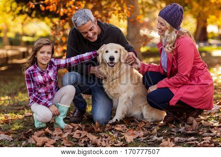 Smiling family stroking dog while crouching at park during autumn