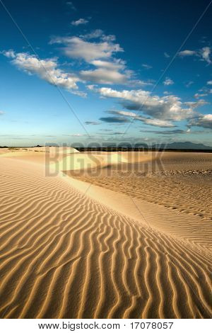 ripples of sand dune of cumbuco near fortaleza in ceara state brazil poster