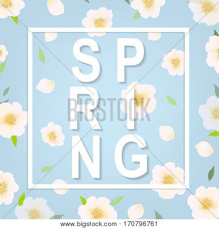 Cherry Flower Spring Banner