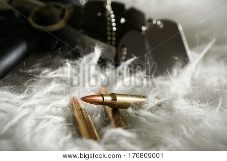 Military set on fur background