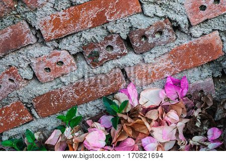 Brown Brick Wall With Pile Of Petal Of Paper Flower, Bougainvillea Background