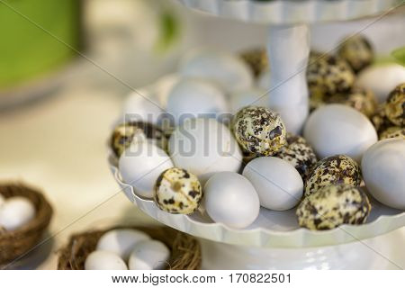 Plastic eggs white and the quail on a riser for the holidays