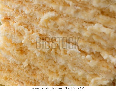The texture of the cake. Piece of homemade tasty sponge cake with pastry cream