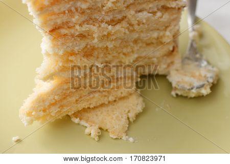 Piece Of Homemade Tasty Sponge Cake With Pastry Cream