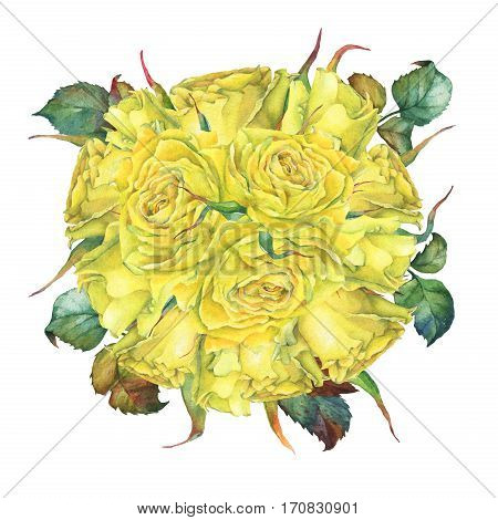 Wedding bouquet of yellow golden roses. Hand drawn watercolor painting on white background.