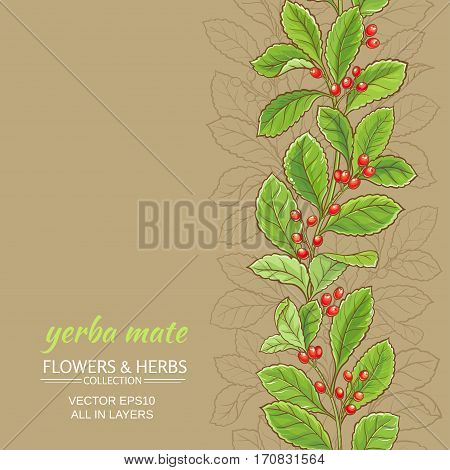 yerba mate vector pattern on color background