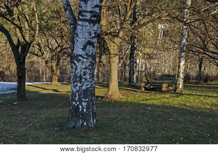 Wintertime view with place for respite in the park, Pancharevo, Bulgaria