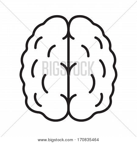 Human brain linear icon. Isolated vector illustration