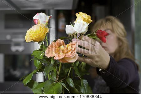 Woman hands arranging bouquet of fresh rosesmodern interior in the blurred background